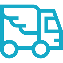 icon-express-delivery